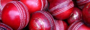5781_CricketBalls02