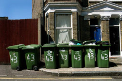 0408_bins.jpg