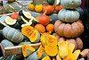 9702_gourds