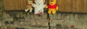 10314_Bearsonawall