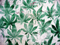 11734_Cannabis_stencil