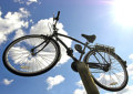 13093_Bike_skies