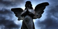 15820_angel