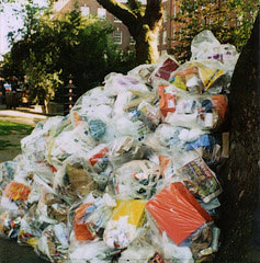 rubbish1901.jpg