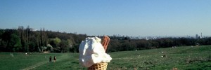 17593_ice_cream_cone
