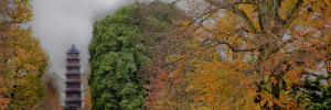Autumn colours in Kew. Photo / Pryere.