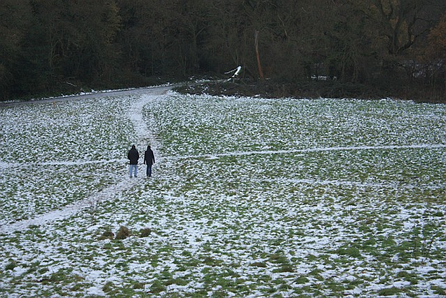 Snow on Hampstead Heath