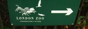 London Zoo sign