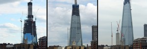 shard_tryp