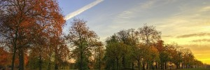 kensington_gardens_sunset2