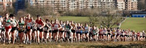 Watch cross country running on Hampstead Heath on Saturday / Photo by Clive.N Totman