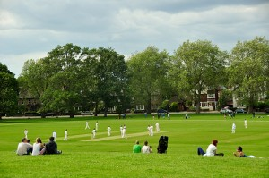Admire the new cricket field on Hilly Fields at their Midsummer Fayre this Saturday / photo by Ben Brown