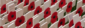This week ends with Remembrance Sunday / photo by londonbackpacker