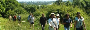 Spring into Summer with Walk London's free, guided walks this weekend. Details below.