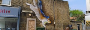 Boe and Irony squirrel, Tottenham
